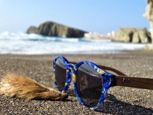 Castor Sunglasses